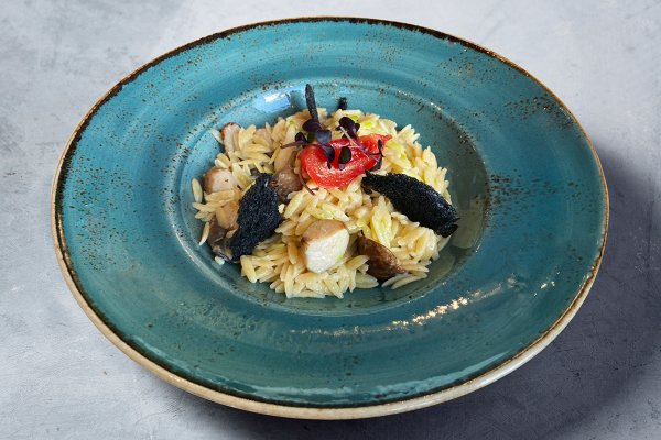 Orzo Pasta with porcini mushrooms