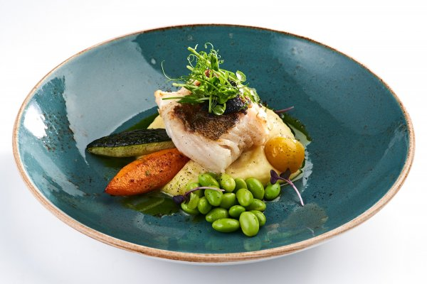 Cod fish fillet with potatoes puree